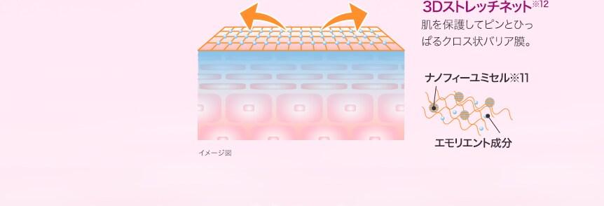 3Dストレッチネット※12 肌を保護してピンとぴっぱるクロス状バリア膜。 ナノフィーユミセル※11 エモリエント成分